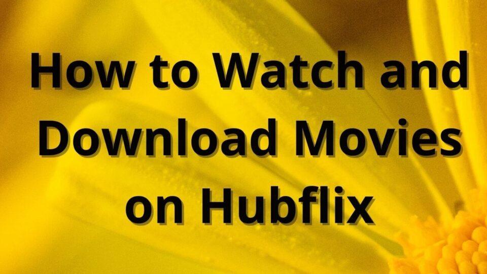 Hubflix download